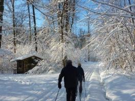 Winter wonderland_11
