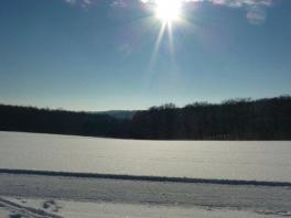 Winter wonderland_2