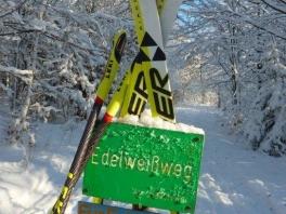 Winter wonderland_4