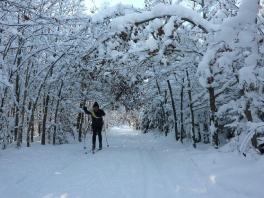 Winter wonderland Edelweißweg 2012