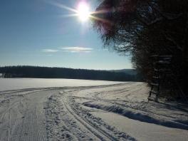 Winter wonderland_9