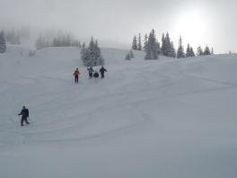Kombitour   Ski und Schneeschuh