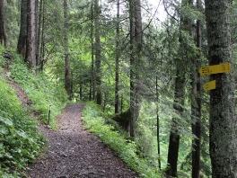 Tour Jochbachtal - Hornbachjoch_1