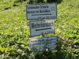 Tour Schönecker Scharte 2021